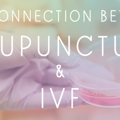The Connection between IVF & Acupuncture Boulder